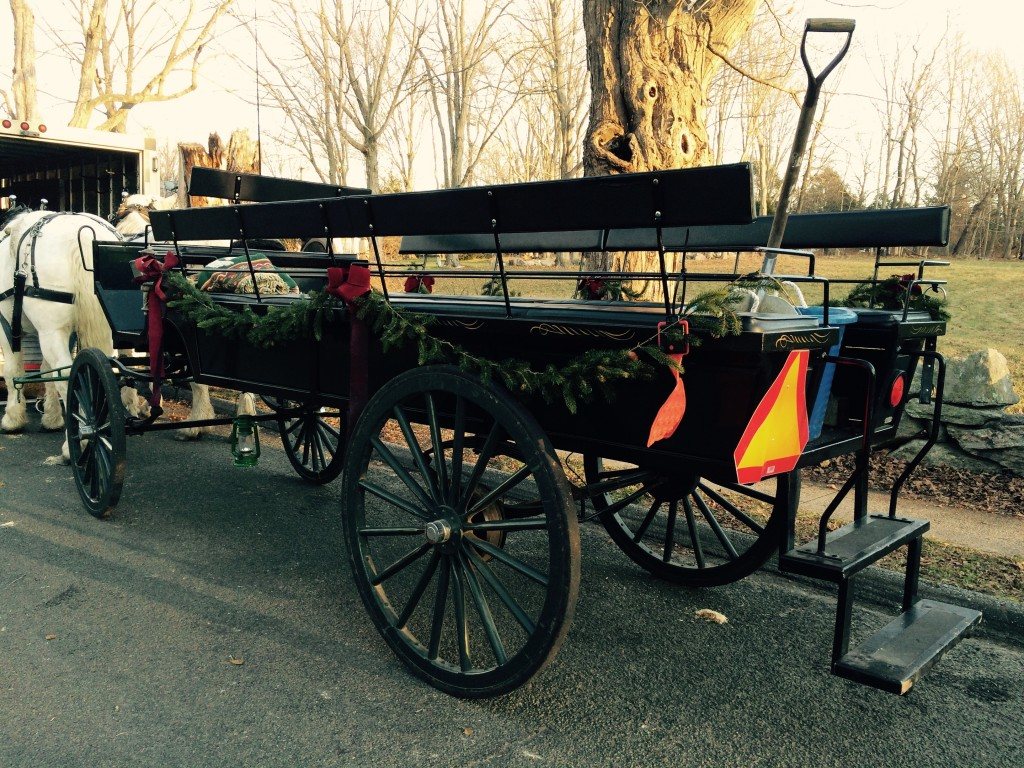horse carriage 12-19-2015